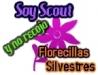 scouts18.jpg