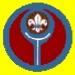 scouts29.jpg