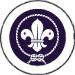 scouts50.jpg